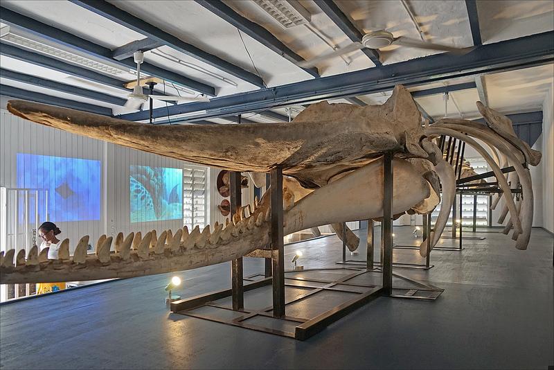 musées à Luchon